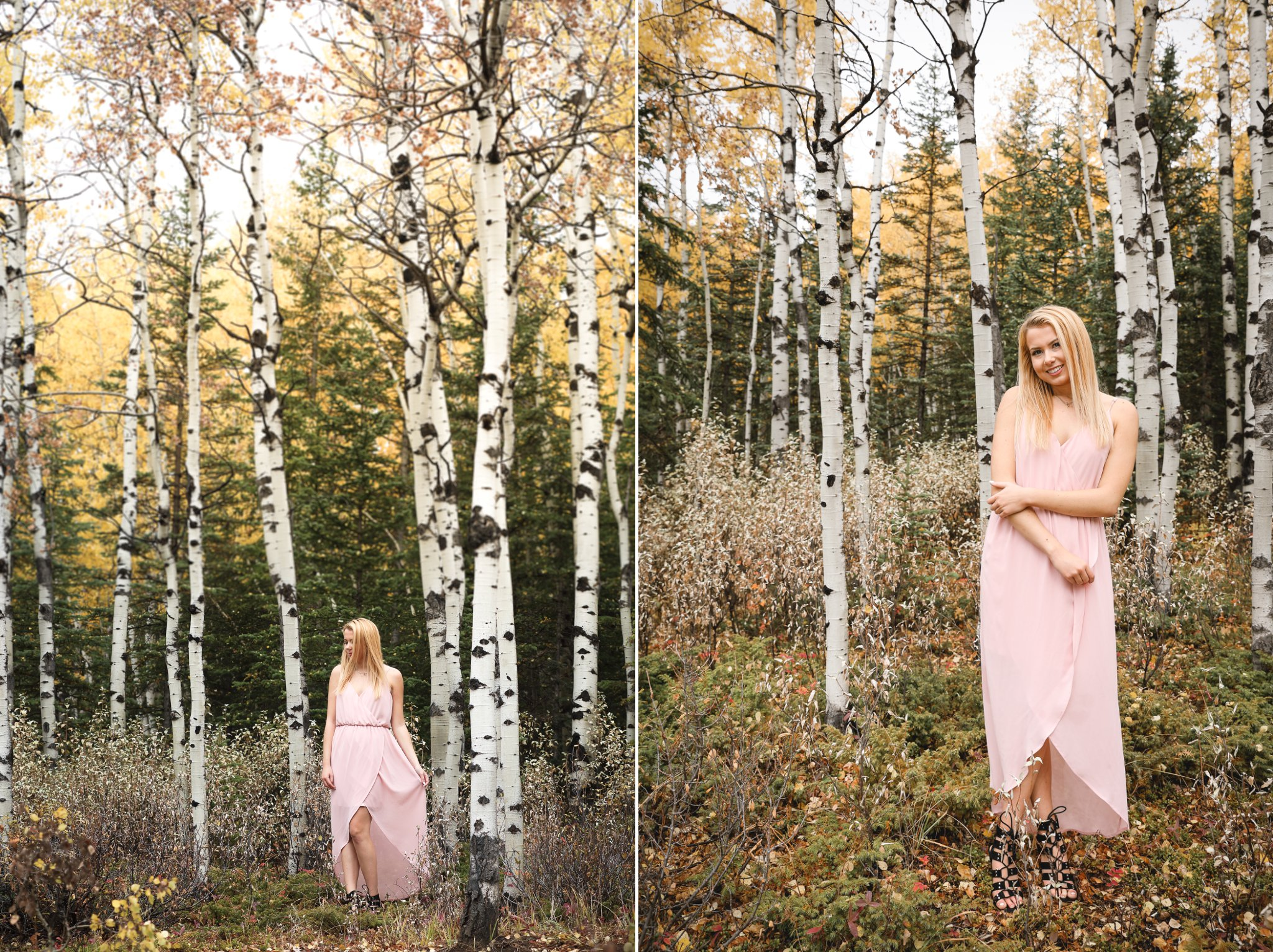 AshleyDaphnePhotography Calgary Photographer Wedding Family Senior Portraits Rocky Mountains Sheep River Falls Autumn Fall_0012.jpg