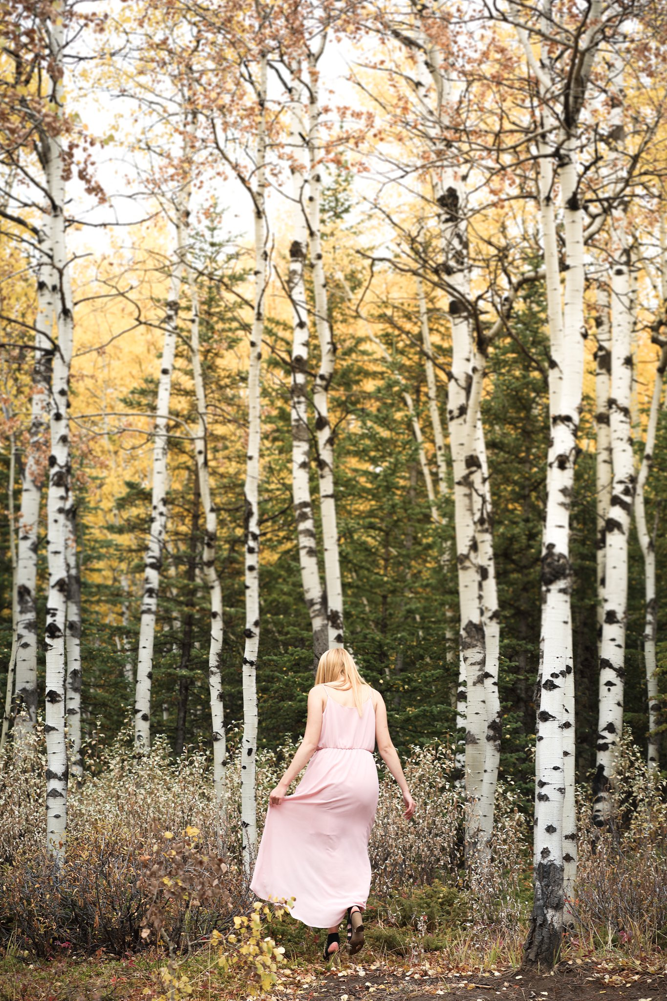 AshleyDaphnePhotography Calgary Photographer Wedding Family Senior Portraits Rocky Mountains Sheep River Falls Autumn Fall_0033.jpg