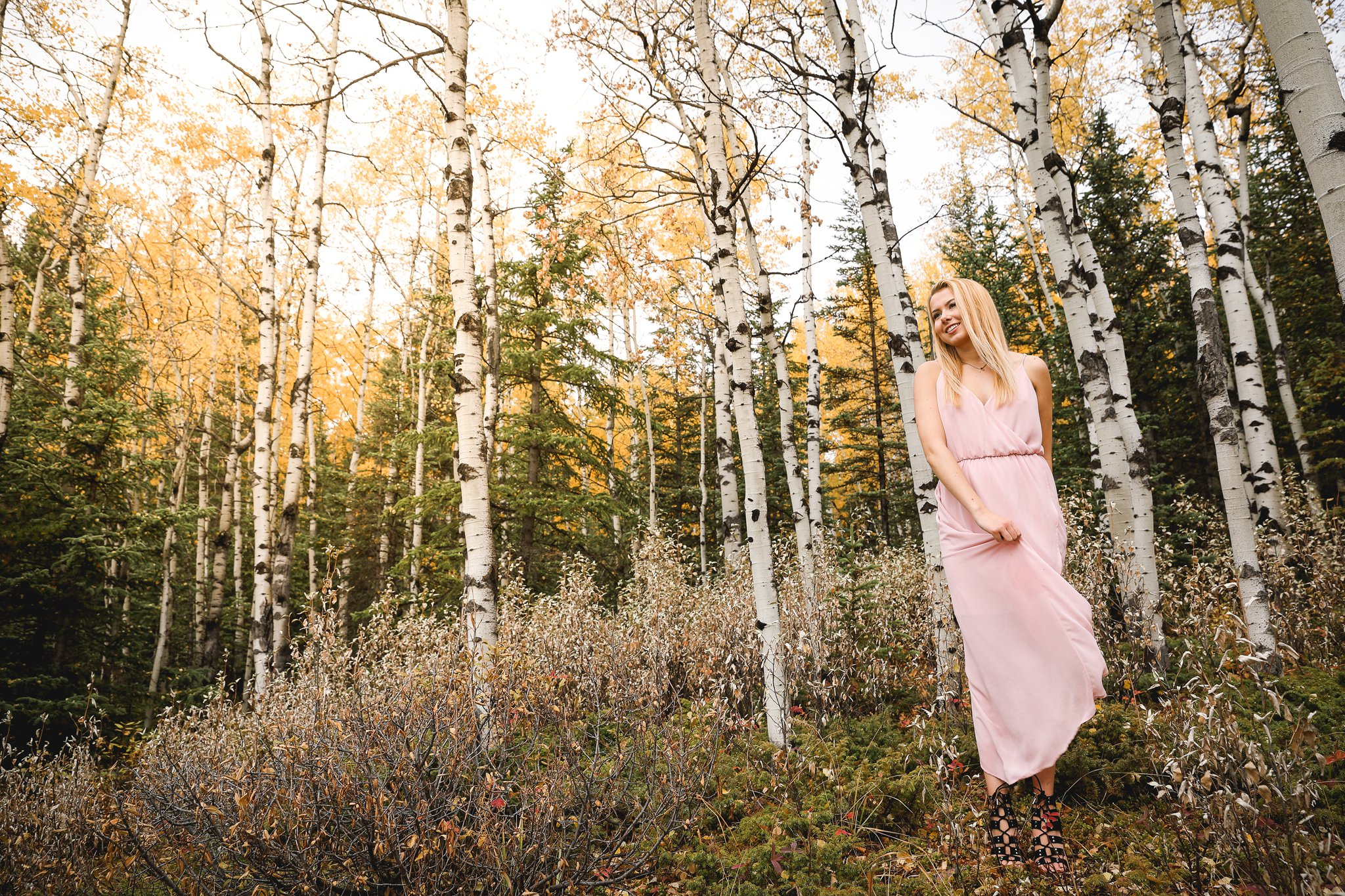 AshleyDaphnePhotography Calgary Photographer Wedding Family Senior Portraits Rocky Mountains Sheep River Falls Autumn Fall_0042.jpg
