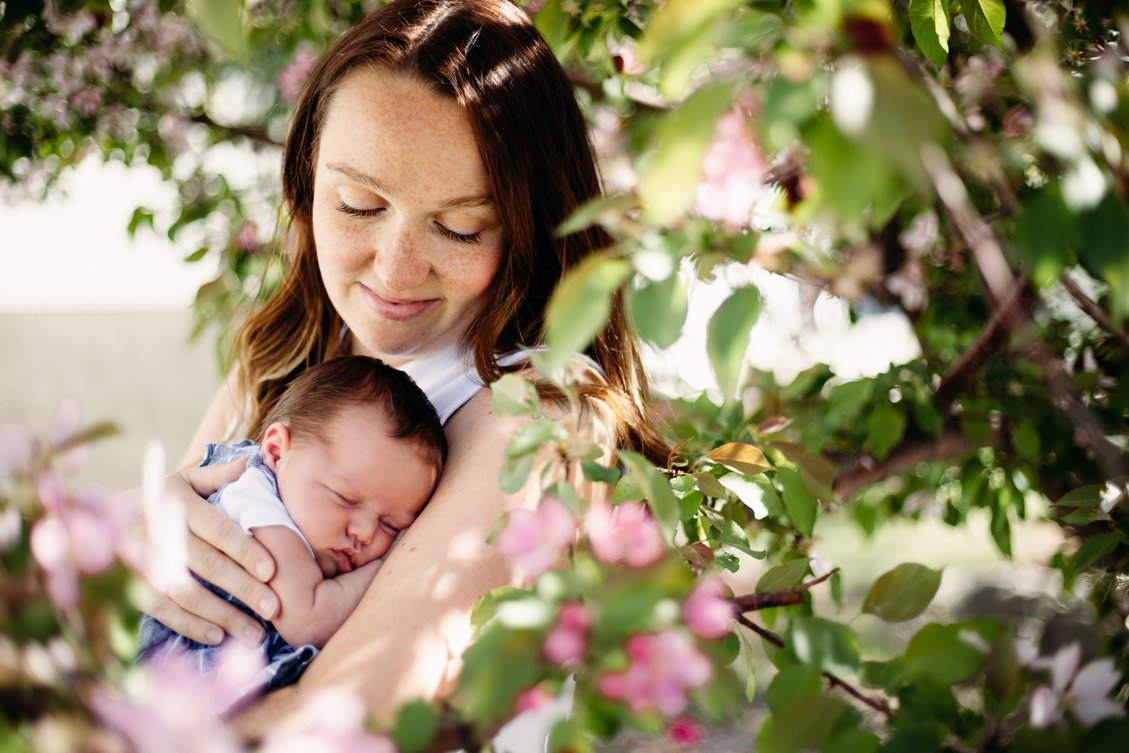 AshleyDaphnePhotography-Family-Photographer-Calgary-Spring-Cherry-Blossom_0044.jpg