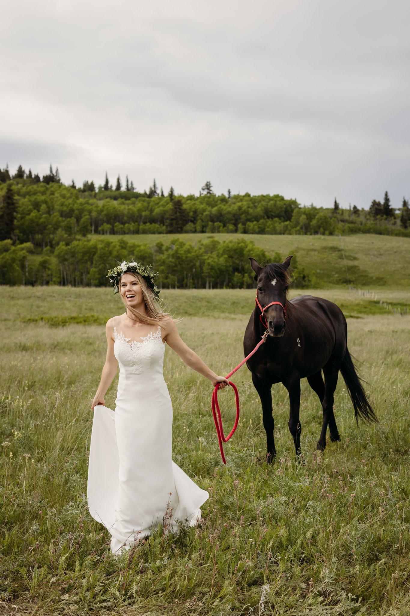 Ashley Daphne Photography,Calgary wedding photographer,Castle Provincial Park,Wedding Photography,arabian racing horse,cabin wedding,rustic wedding,small intimate wedding,wedding photographer,yyc wedding photographer,